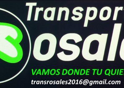 IMAGEN 1 TRANSROSALES