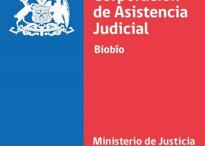 nuevo_logo_caj_biobio