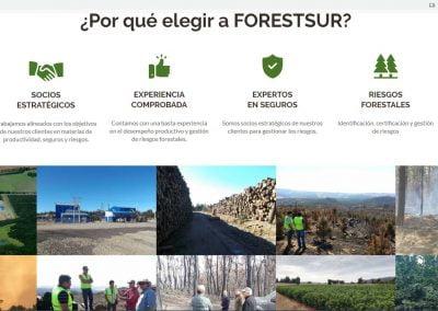 forestur2
