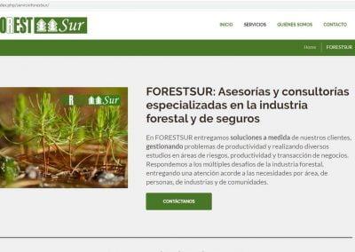 forestur3